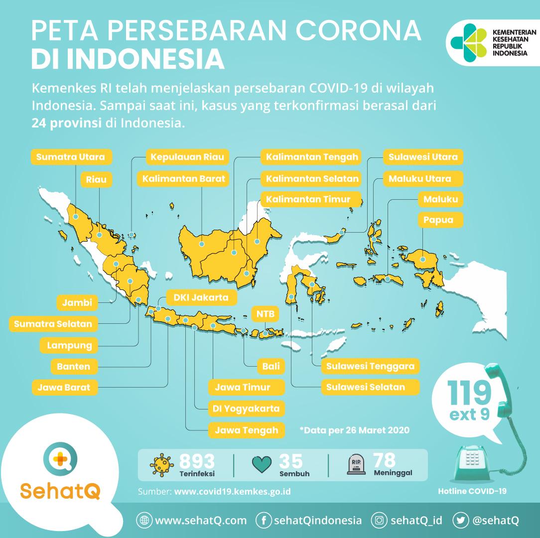 Peta persebaran virus corona di Indonesia