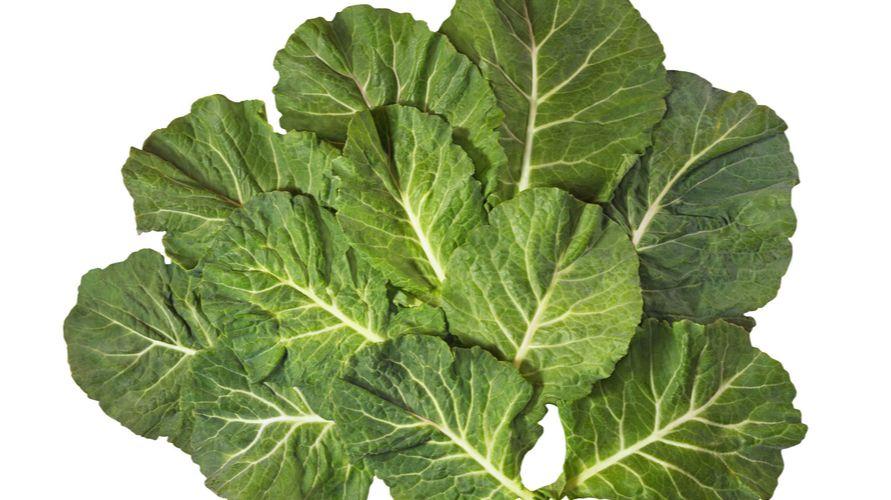 Collard greens adalah sayuran silangan sejenis sawi yang bernutrisi tinggi