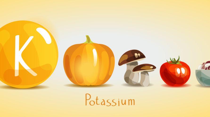Perbedaan kalium dan kalsium yang sangat penting untuk diketahui