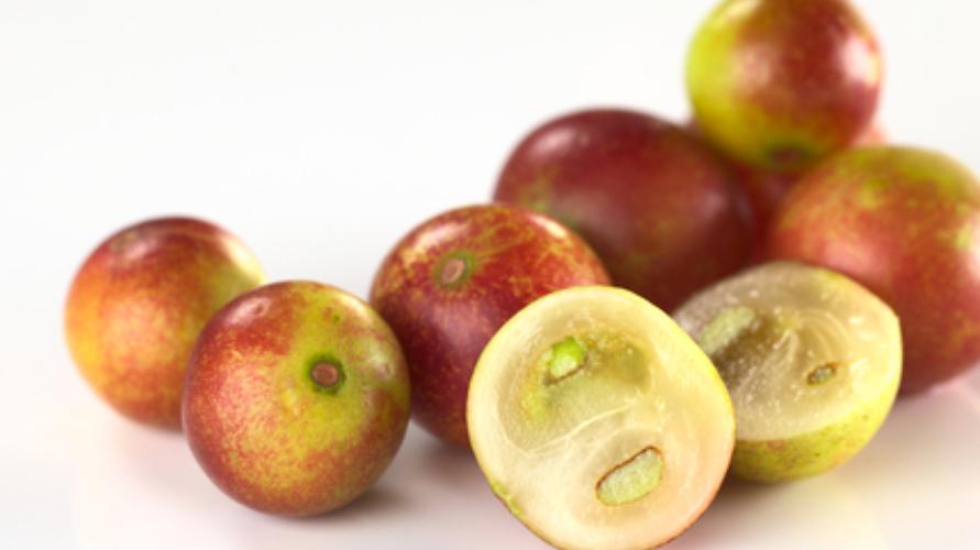 camu-camu berry dipercaya sebagai superfood karena kandungan nutrisinya