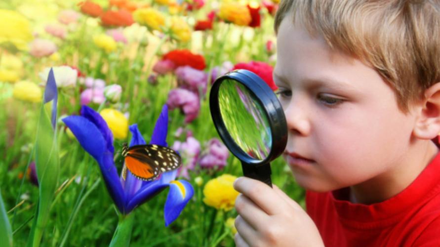 Rasa ingin tahu anak dapat dikembangkan dengan menumbuhkan sikap positive thinking