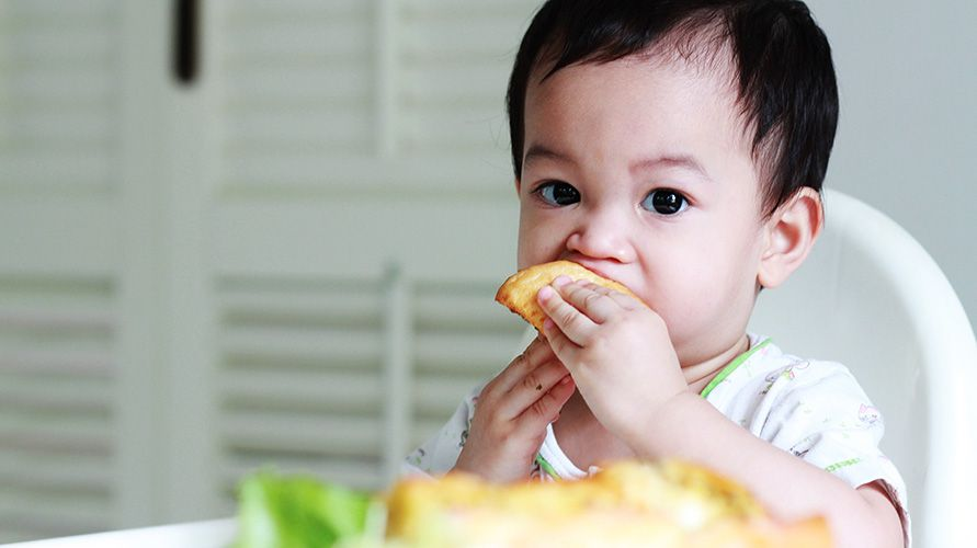 finger food untuk bayi