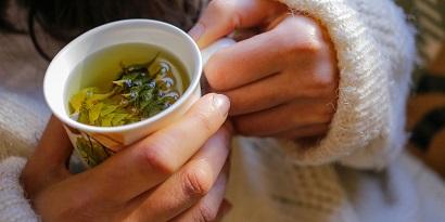 teh hijau hangat