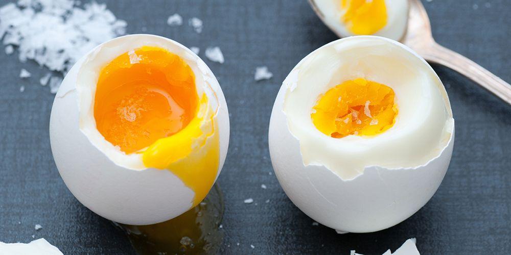 telur sumber protein sehat