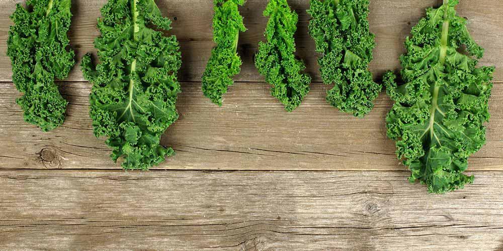 Sayuran hijau mengandung vitamin D dapat membantu melawan infeksi
