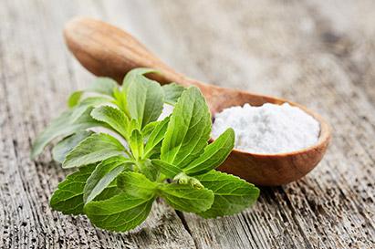 Tanaman stevia merupakan pemanis alami rendah kalori pengganti gula