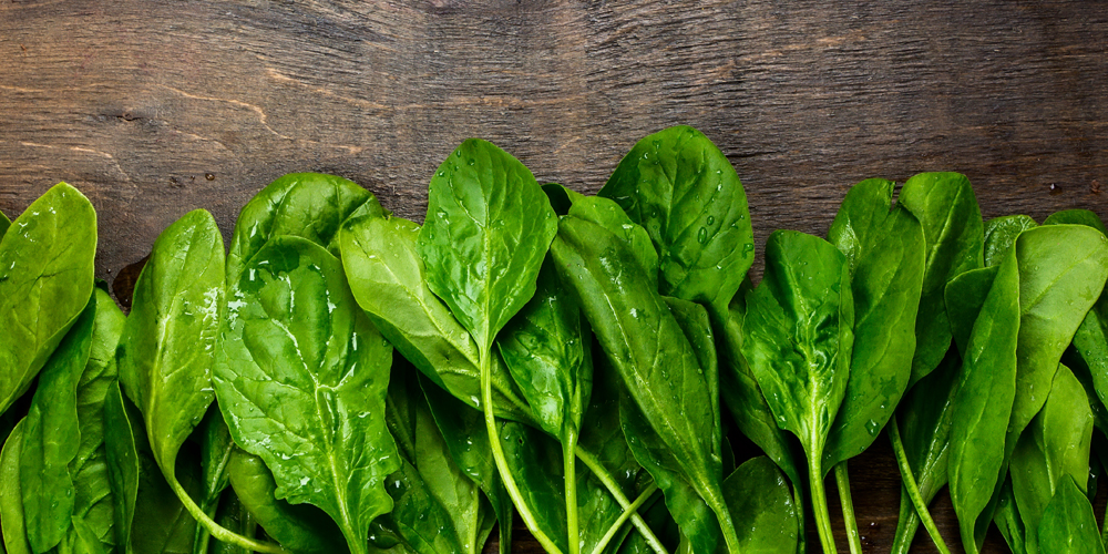 Sayuran hijau mengandung lecithin untuk mencegah mastitis