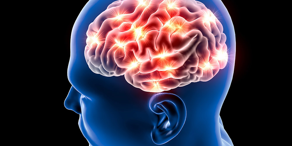 Bersosialisasi memberikan dampak positif pada fungsi otak