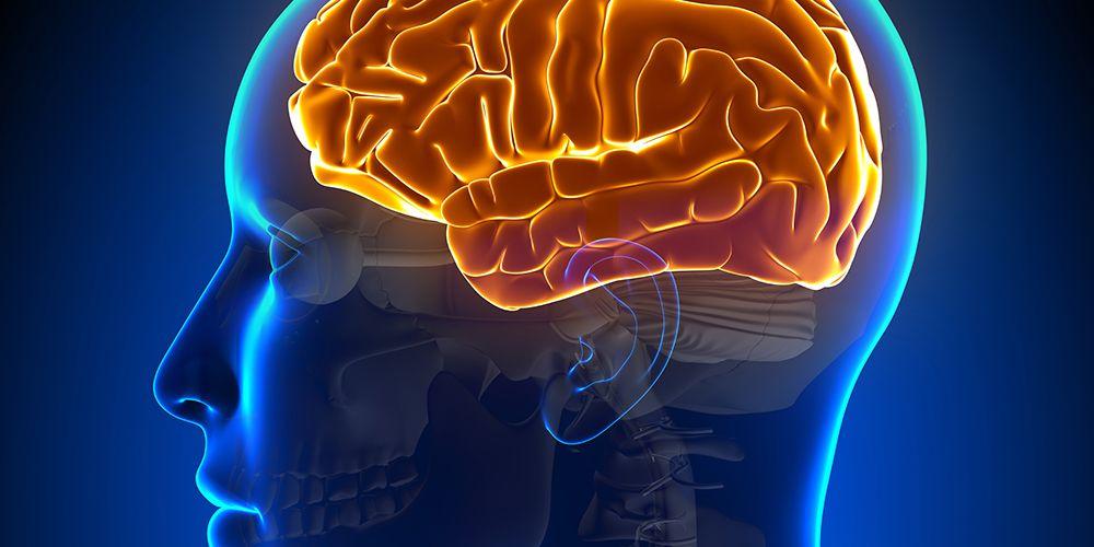 Kadar zat kimiawi otak yang terlalu tinggi mungkin berkaitan dengan perilaku seksual kompulsif alias hiperseks.