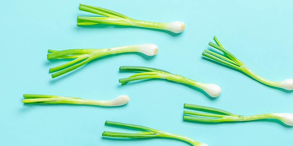 Cara menyimpan sayur segar seperti daun bawang harus tepat