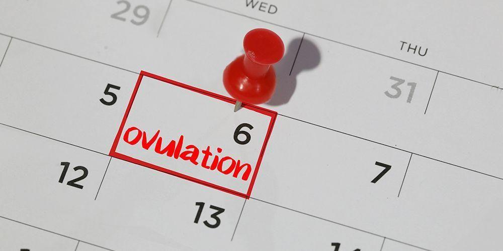 Kalender ovulasi bisa digunakan untuk merencanakan progam kehamilan anak laki-laki