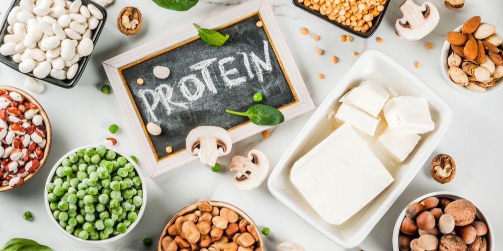 Asam amino esensial dan non esensial adalah bahan baku protein