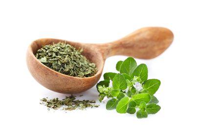 Oregano adalah herbal bernutrisi