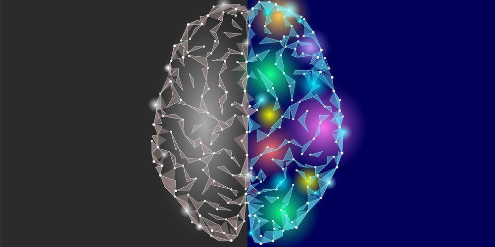 Ada banyak fakta unik seputar otak manusia