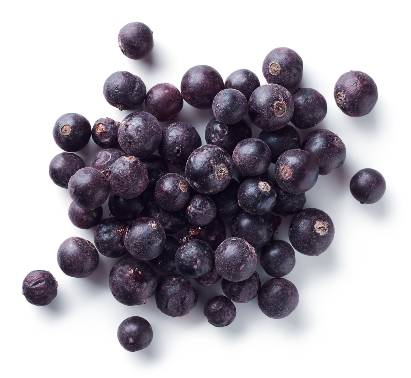 Buah blackcurrant