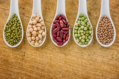 Kacang beans sumber molibdenum