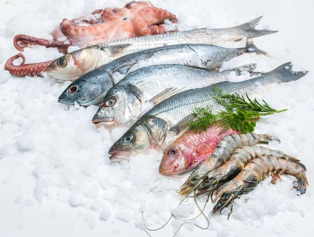 Daging ikan kenyal dan kencang adalah ciri-ciri ikan segar