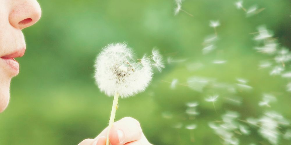 Alergi serbuk sari bisa ditandai dengan sakit tenggorokan