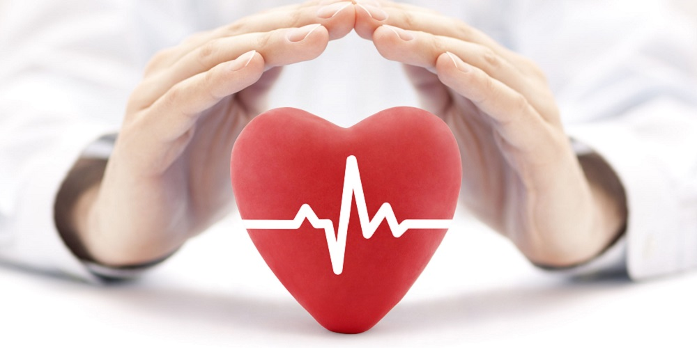 jantung sehat