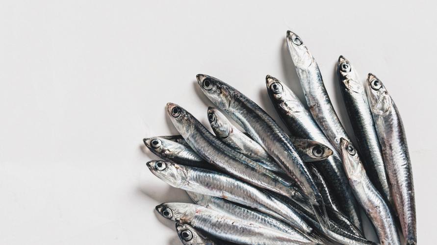 Teri segar tinggi kalsium sehingga menjadi ikan yang bagus untuk MPASI