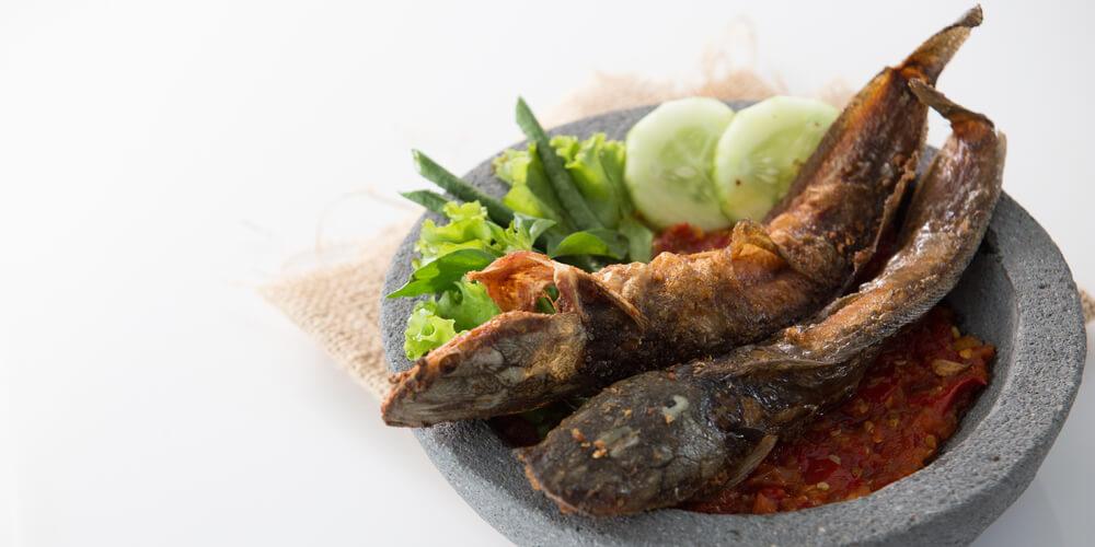 bahaya makan ikan lele dapat menyebabkan kanker
