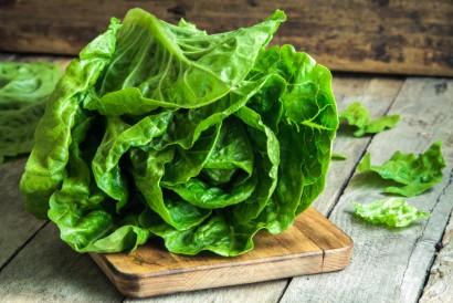 Daun selada Romaine merupakan salah satu sayuran yang dipakai dalam resep caesar salad