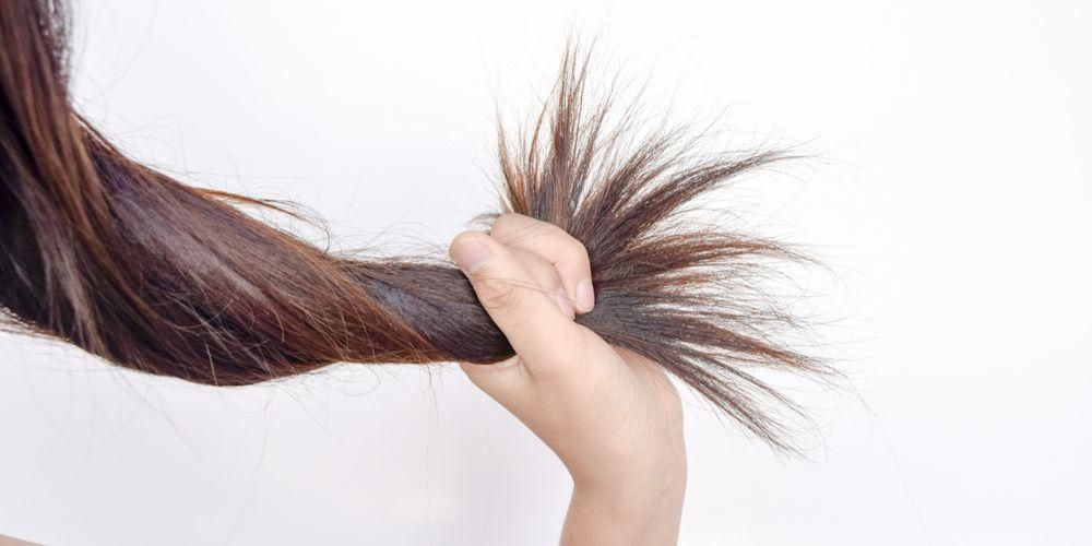 Menutrisi rambut jadi manfaat masker lidah buaya