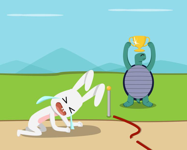 kelinci dan kura-kura