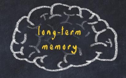 Fungsi hipokampus berkaitan dengan memori jangka panjang