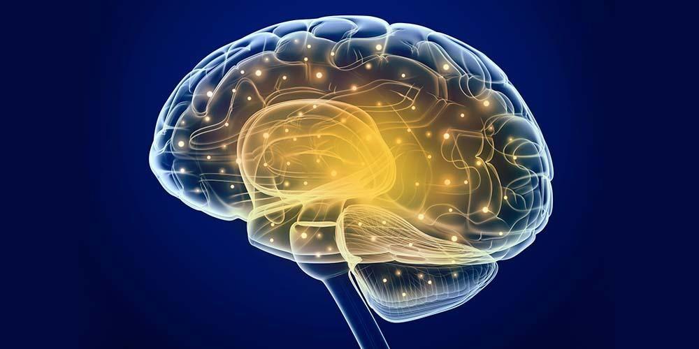 Manfaat teh hijau bisa meningkatkan fungsi otak