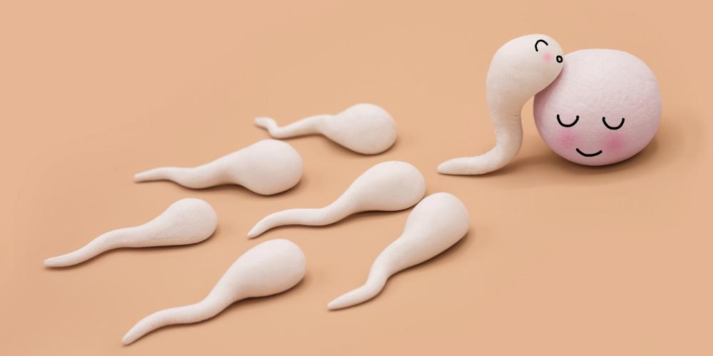 Manfaat kayu manis untuk pria salah satunya adalah meningkatkan kualitas sperma