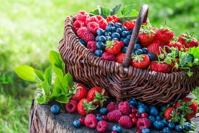 Salah satu buah yang dapat memenuhi kebutuhan serat harian adalah buah beri