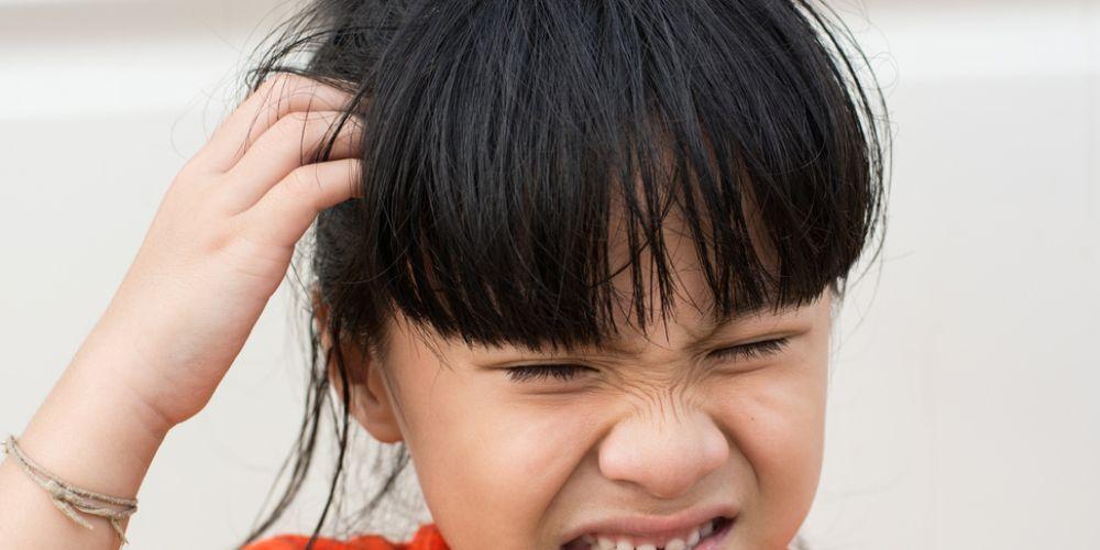 Baby oil dapat menyingkirkan kutu rambut yang membuat kepala sering gatal