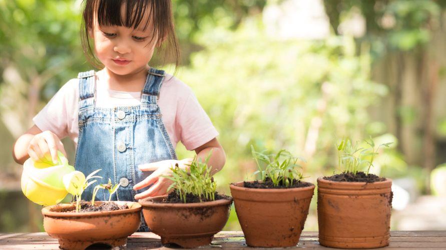 Anak berkebun