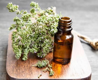 Minyak thyme