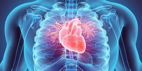 Henti jantung mendadak pada atlet seperti markis kido dan christian eriksen disebabkan karena penyakit jantung