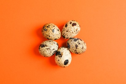 Olahan telur puyuh sebaiknya dihindari jika kadar kolesterol tinggi