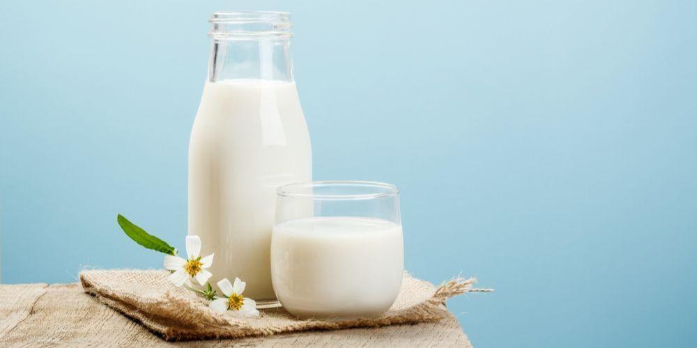 Susu non fat adalah susu rendah lemak yang sehat