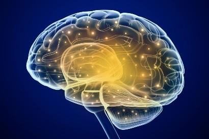 Vervain dapat melindungi saraf dan otak dari kerusakan